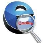 come cancellare i cookies dal tuo computer - guida pratica di forzaforex