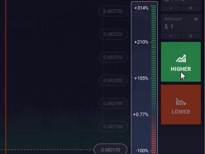 La scala verde indica il tuo profitto, mentre la rossa la tua perdita.