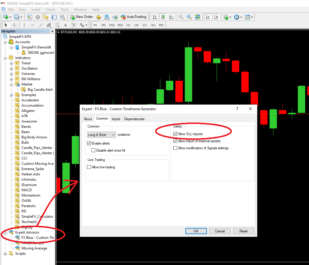 Expert installation on Metatrader